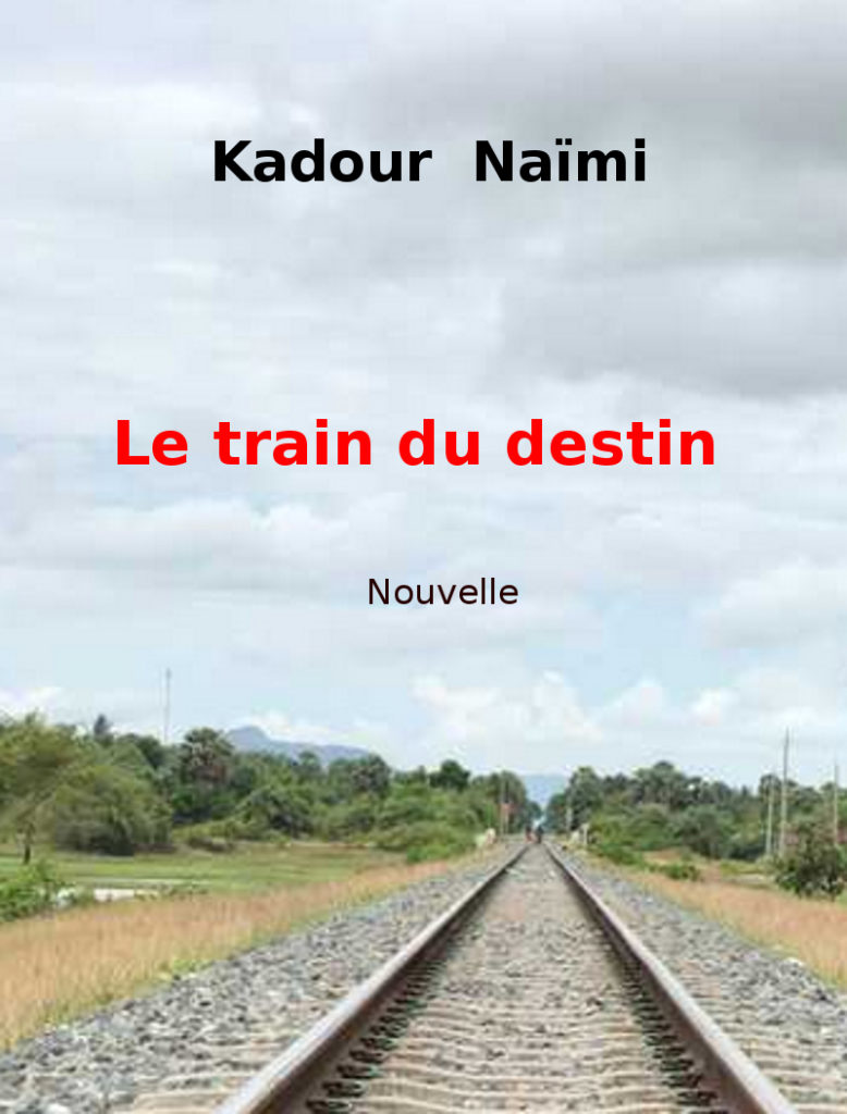Train du destin Couverture