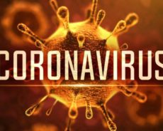 « Personne n'est mort du coronavirus »