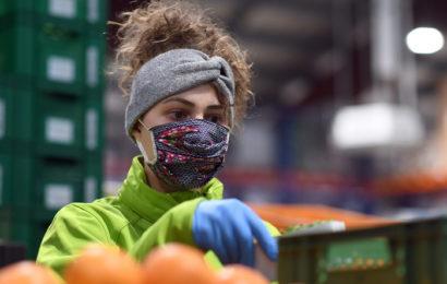 Pénurie alimentaire : trois organisations internationales lancent l'alerte