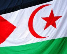 Sahara occidental : 47e anniversaire de la création du Front Polisario