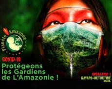 COVID-19 : LES PEUPLES AMÉRINDIENS RISQUENT L'ANÉANTISSEMENT