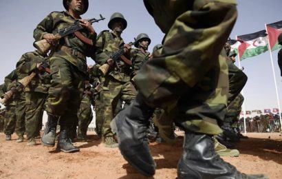 Opérations extérieures : jusqu'où ira l'armée algérienne?