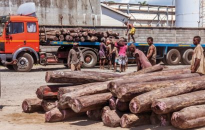 Le trafic international de matières premières, un fléau qui ravage le continent africain