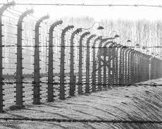 Les nazis se sont vantés d'avoir fait six millions de victimes de l'Holocauste, mais c'est un Juif qui a été le premier à citer ce chiffre
