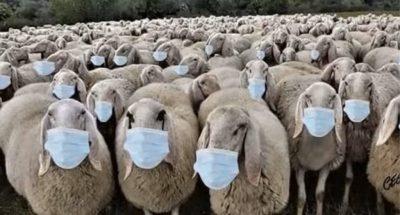 La globalisation du capitalisme, le « gouvernement mondial » et la crise du coronavirus