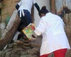 L'ONU demande au Venezuela l'autorisation d'étudier sa stratégie de suppression de la pandémie pour la reproduire dans d'autres pays