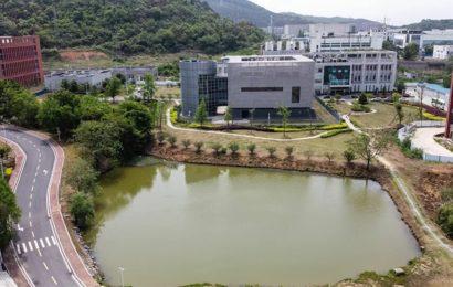 Le fonctionnement du laboratoire de Wuhan détaillé par un virologue