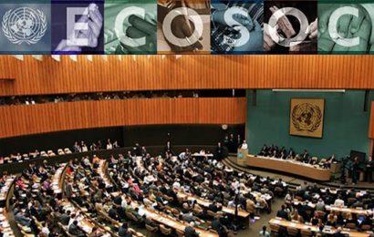 ECOSOC / Organisation des travaux de la session de 2020 du Conseil économique et social (ONU)