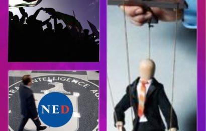 Hirak, NED et ONG algériennes