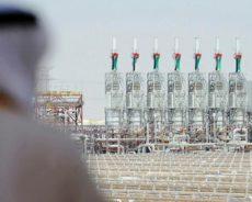 EDF et Jinko seront en charge du plus grand projet de centrale solaire au monde dans les Émirats