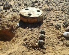 Une ONG italienne aide les Sahraouis à déminer les territoires libérés