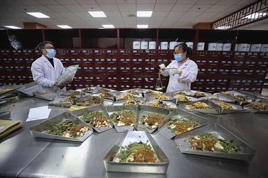 Infuser le pouvoir de la médecine traditionnelle chinoise dans la construction d'une communauté de santé pour l'humanité