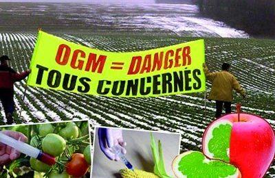 Lettre ouverte pour l'interdiction des OGM issus du forçage génétique