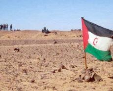 Pétition au gouvernement espagnol pour qu'il assume ses responsabilités d'État en dénonçant l'illégalité des Accords de Madrid (1975) sur le Sahara occidental et en agissant en conséquence