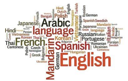 Algérie / Mokri et le ressentiment linguistique