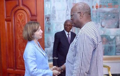 Mali / Lettre ouverte à la Ministre des armées, Florence Parly