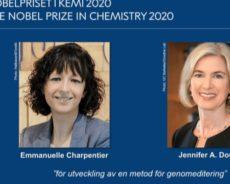 Le Nobel de Chimie remis aux découvreuses de la méthode pour créer des bébés sur mesure