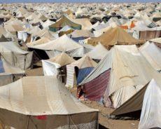 Sahara occidental, le retour de la force