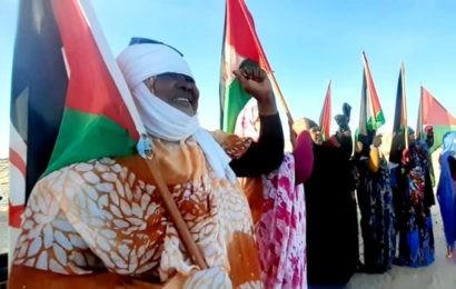 L'ONU préoccupée par les derniers développements au Sahara occidental