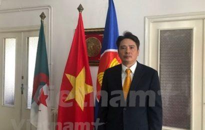 Vietnam – Algérie : de riches potentiels pour promouvoir le commerce et l'investissement