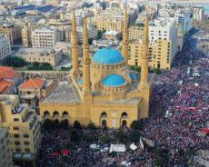 Liban : festin dans un nid de vautours