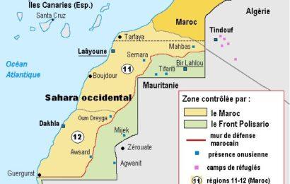 Sahara occidental : mémoires coloniales, regards postcoloniaux