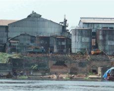 RD Congo / Un nouveau rapport illustre l'échec monumental du financement par les banques de développement européennes d'une plantation de l'ère coloniale