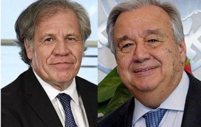 Lettre ouverte à l'ONU et l'OEA