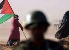 Sahara occidental : les « arrangements » de l'Europe avec le droit international