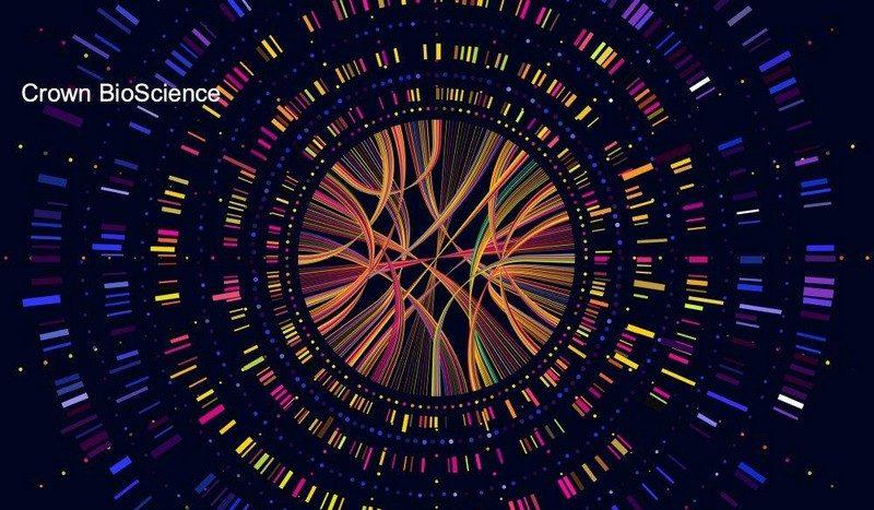 Les trois virus : biologique, informatique et idéologique