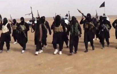 Moyen-Orient / Le groupe Etat islamique : Des ambitions intactes même sans califat