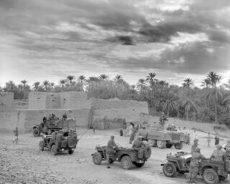 France / Guerre d'Algérie. La déclassification des archives va-t-elle mener à de nouvelles découvertes ?
