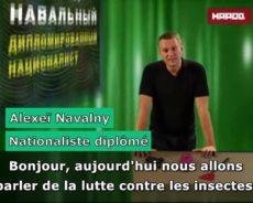 Pourquoi Amnesty ne considère plus Navalny comme un prisonnier d'opinion