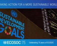 ONU : Lamamra appelle à la mise en oeuvre «urgente» du mandat principal de l'ECOSOC
