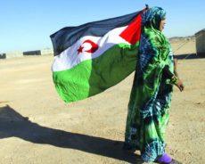 Washington reconsidère sa décision : Doutes sur la vente d'armes au Maroc