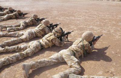 Peter Dale Scott : Les vraies raisons de la guerre en Afghanistan