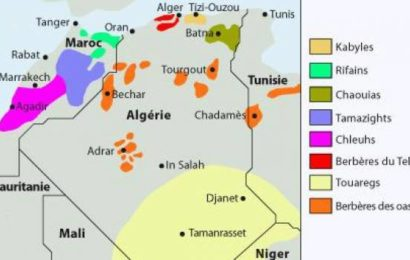 Les Langues amazighes face au rouleau compresseur «Tamazight»