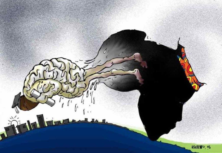 La « harga » des cerveaux algériens : Quand la « matière noire » est plus valorisée que la « matière grise »